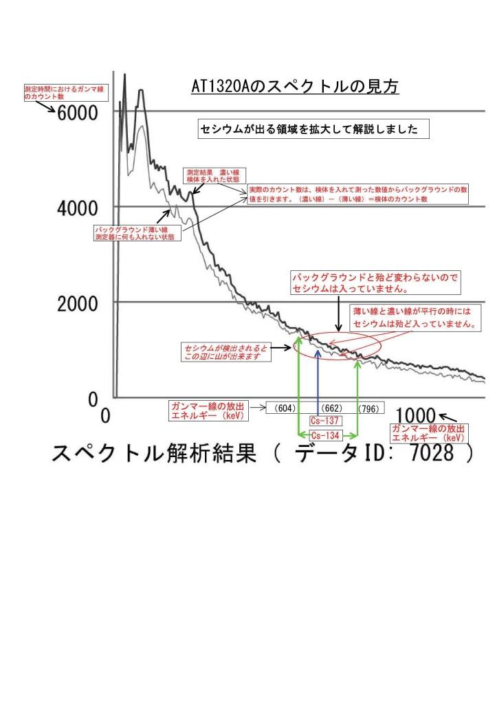 99999 スペクトルグラフの見方 2 7028 document